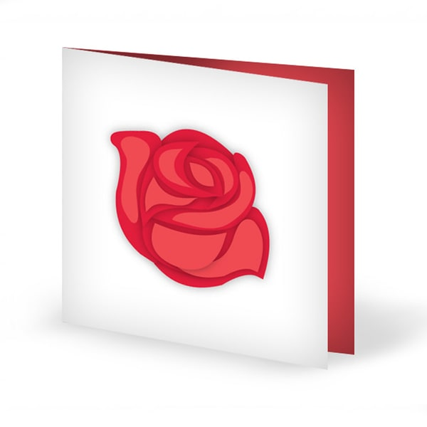 Rose Red Warmth Card | Buy Stationary in Dubai UAE | Gifts