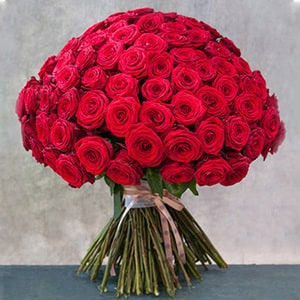 100 Premium American Roses | Buy Flowers in Dubai UAE | Gifts