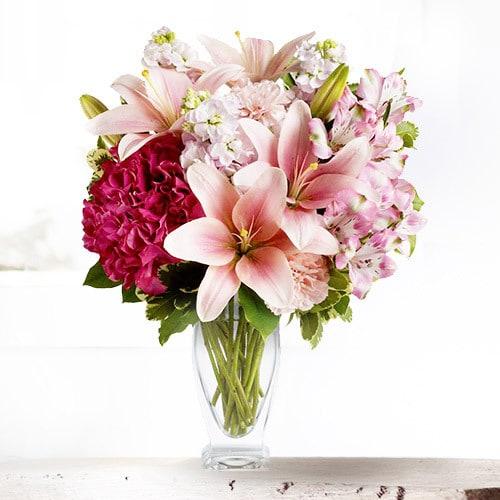 So Special | Buy Flowers in Dubai UAE | Gifts