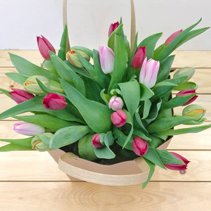 Mixed Garden Tulips | Buy Flowers in Dubai UAE | Gifts