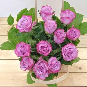 Sierra | Buy Flowers in Dubai UAE | Gifts