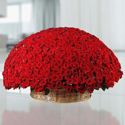 800 Flowers Premium | Buy Flowers in Dubai UAE