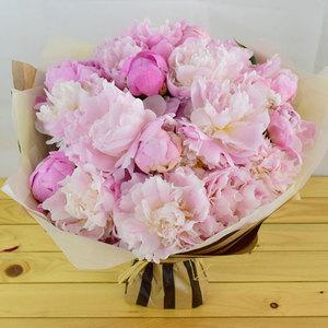 Viva La Peony   Buy Flowers in Dubai UAE   Gifts