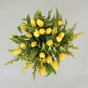 Farmers Choice Tulips | Buy Flowers in Dubai UAE | Gifts