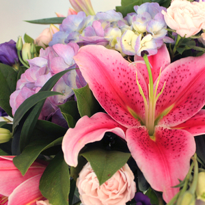 Vibrance | Buy Flowers in Dubai UAE | Gifts