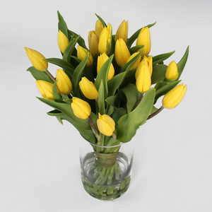 20 Sunny Day Tulips | Buy Flowers in Dubai UAE | Gifts