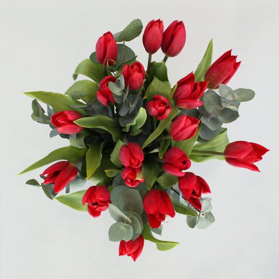 Tulipa Kiss | Buy Flowers in Dubai UAE | Gifts
