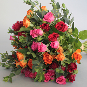 3 of a Kind Baby Roses | Buy Flowers in Dubai UAE | Gifts