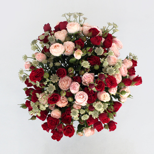Giggles by 800 Flower | Buy Flowers in Dubai UAE | Gifts