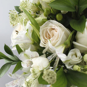 With Love | Buy Flowers in Dubai UAE | Gifts