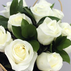 Snow Garden | Buy Flowers in Dubai UAE | Gifts