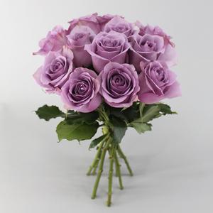 Nightingale Bunch   Buy Flowers in Dubai UAE   Gifts