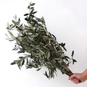 Olives Leaves  | Buy Flowers in Dubai UAE | Gifts