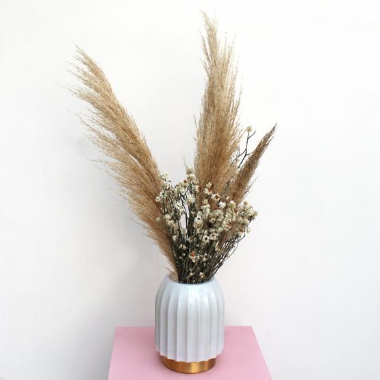Pampas | Buy Flowers in Dubai UAE | Gifts