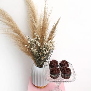 Long lasting | La Pampa (dried) | Chocolate package | Buy Flowers in Dubai UAE | Gifts
