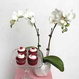 Midi Orchids White | Red Velvet Package | Buy Flowers in Dubai UAE | Gifts