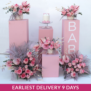 Hospital | Baby Shower Setup Rosy | Buy Flowers in Dubai UAE | Gifts