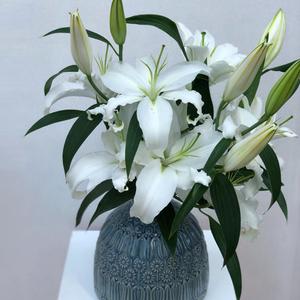 Simply Lily Arrangement | Buy Flowers in Dubai UAE | Flower Bouquet