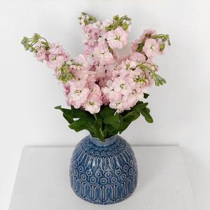 Matthiola Arrangement| Buy Flowers in Dubai UAE | Flower Bouquet